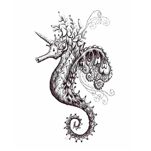 drc illustrations unicorn